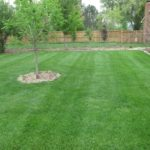 lawn care, landscaping, lawn mowing, 44313, landscaper, mowing service, fairlawn oh, fairlawn ohio,