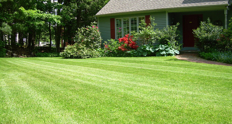 barberton ohio, lawn care, landscaping, lawn mowing, mowing service, barberton oh, landscaper, 44203, lawn service, aeration,