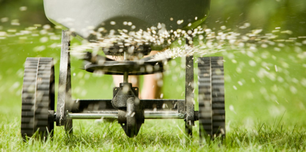 akron oh, green oh, summit county, ohio, oversedding, aeration, aerated, lawn aeration, aerating, core aeration,