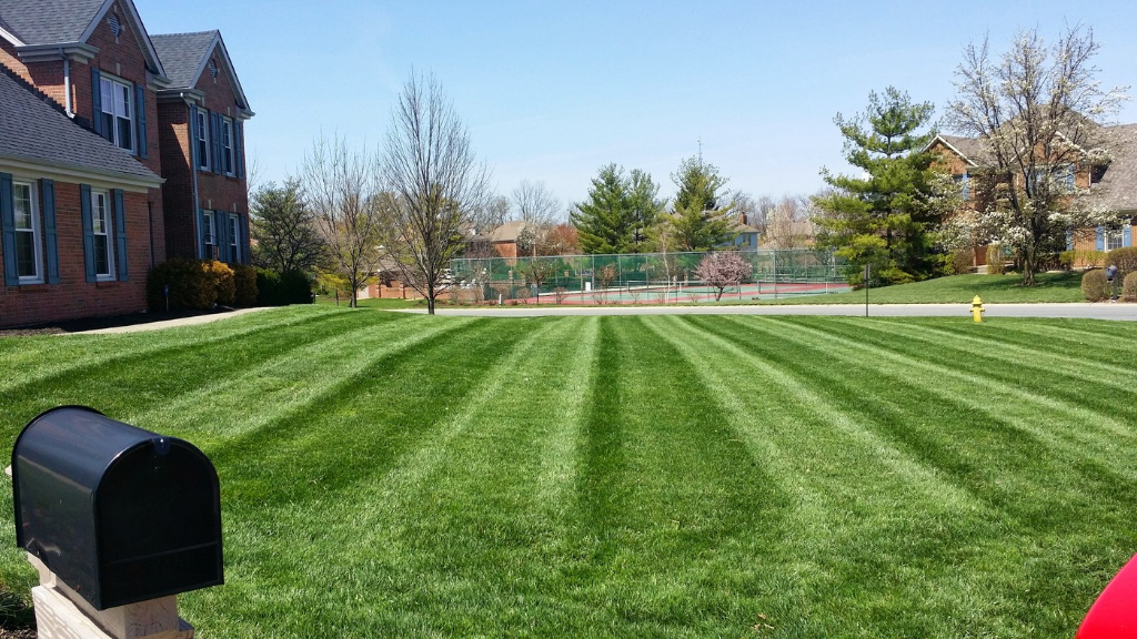lawn aeration, richfield oh, 44286, lawn service, landscaping service, lawn care company, landscaper, mowing grass, mowing company, mower, lawn mowing, northeast ohio, summit county oh, grass, turf,