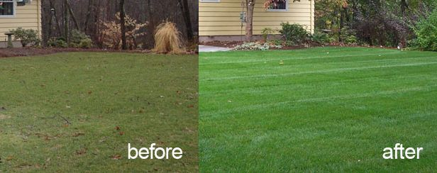 fairlawn ohio, bath ohio, cuyahoga falls oh, aeration service, 44333, 44313, 44221, 44223, core aeration, overseeding, overseed, over seed, lawn aerating, lawn care, lawn service, northeast ohio, grass,