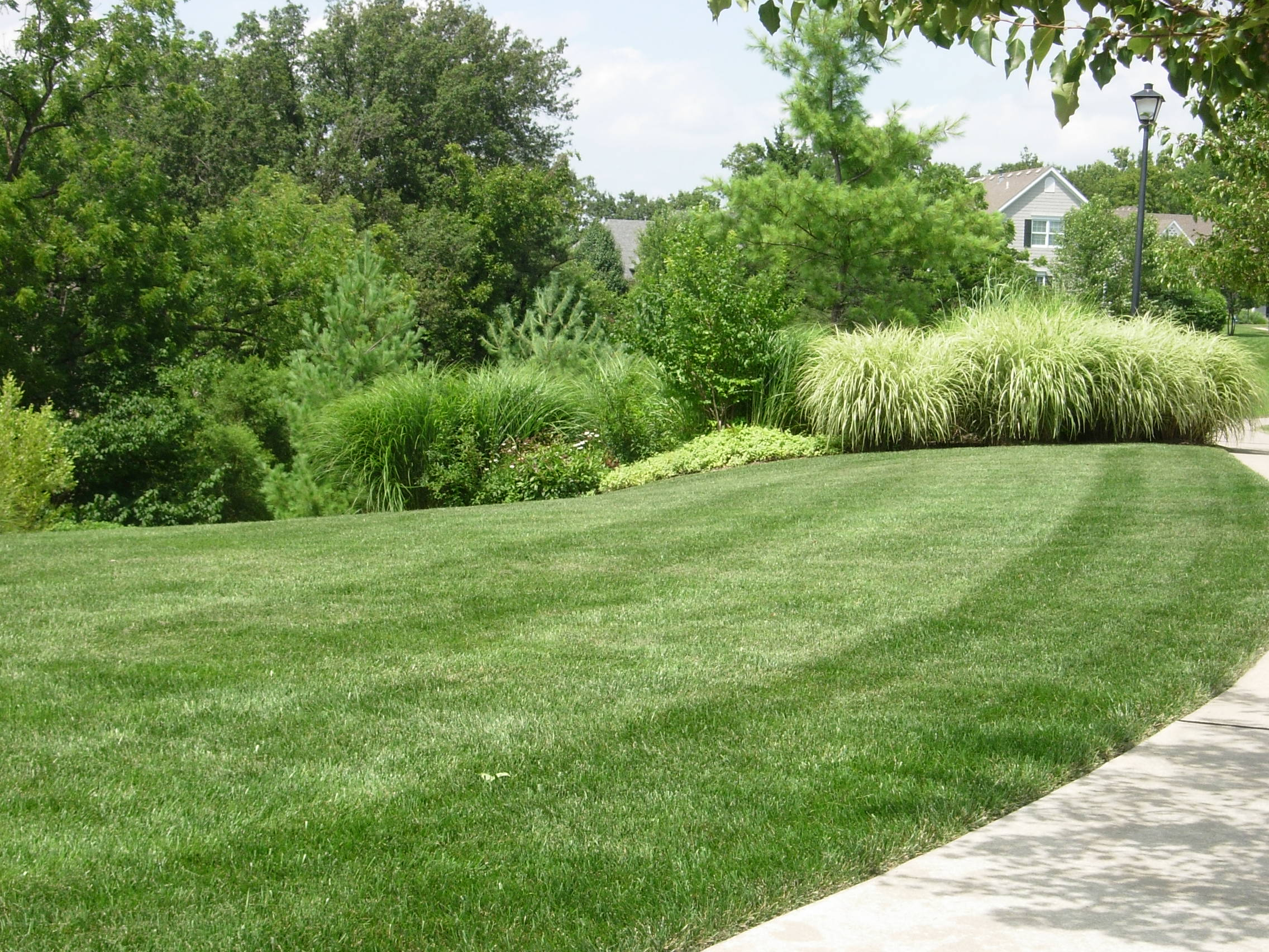 4 seasons services, lawn care services, lawn treatments, turf care, lawn care, caring for your lawn, grass fertilization, fertilizer services, akron ohio, canton ohio