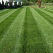 Lawn care, landscaper, lawn mowing, landscaping, mowing service, landscape service, mowing, portage lakes ohio, portage lakes oh, core aeration,