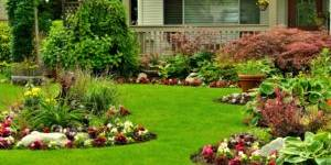Lawn Mowing, Landscaping, Lawn Care, Mowing