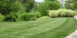 lawn care, richfield oh, 44286, lawn service, landscaping, summit county oh, lawn mowing, landscaper, lawn aeration, core aerating,